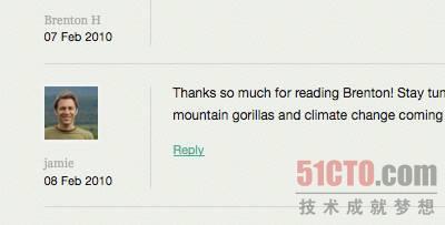 国际大猩猩保护计划网站为评论家的名字使用了word-wrap