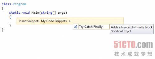 插入TryCatchFinally自定义代码段