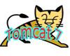 Tomcat 7最大的改进是其对Servlet 3.0和Java EE 6的支持。在Apache刚刚发布的首个Tomcat 7版本中,我们看到