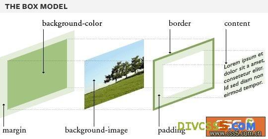 空间 图解 margin/margin的解剖图...