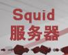 和Web服务器、FTP服务器、邮件服务器一样,Squid服务器也是Linux/Unix上的一个常见服务。Squid一般被当作代