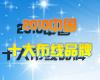 2010年中国十大布线品牌