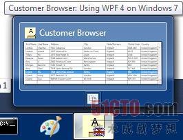 自定义缩略图图像(只显示DataGrid)和Copy工具栏按钮