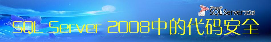 专题:SQL Server 2008中的代码安全