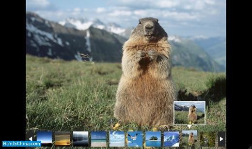 图 8 . 完整的图片浏览器效果
