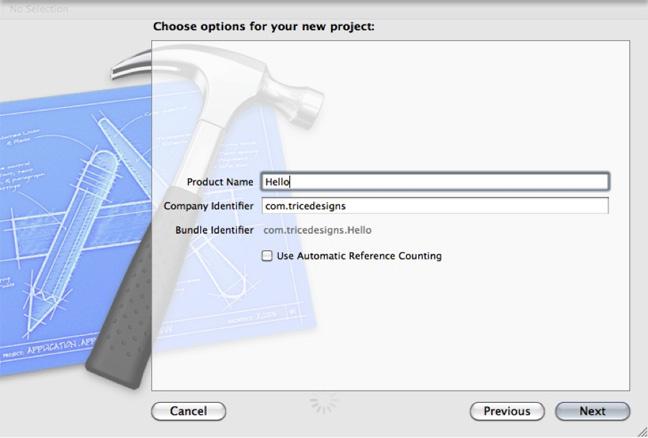 图4. 设置项目名称以及其它选项