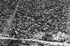 "<p><strong>广岛、长崎的天气决定了它们成为原子弹目标</strong></p><p>1945年8月6日,广岛上空晴空万里。7时9分,一架气象侦察机飞过广岛上空,发回报告:""云层覆盖小于3/10,建议投放原子弹。""这意味着,广岛的晴朗天气适合投放第一颗原子弹。8月8日,第二颗原子弹载入B-29轰炸机,但是作为原定投放目标的北九州市上空乌云密布,不适合原子弹投放,因此备选的长崎市就不幸成为了第二颗原子弹的目标。</p><br />"