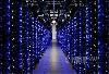 这些服务器上的蓝色LED等显示一切工作正常,选择LED灯作为指示灯是因为它们寿命长且亮度高。
